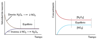 equilibrio-quimico-dinamico