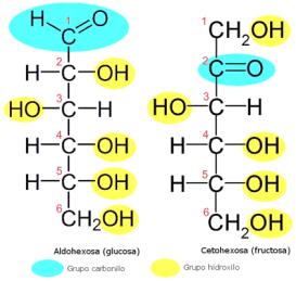 glucidos-grupos-funcionales