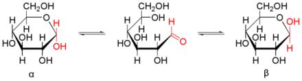 glucosa-equilibrio