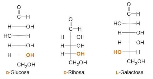 monosacaridos-D-L
