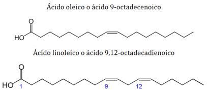 lipidos-07-nombre-acidos-grasos