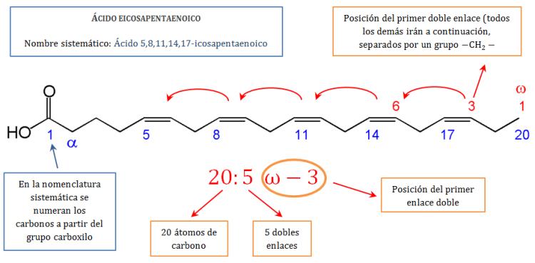 lipidos-08-acido-eicosapentaenoico-omega-3