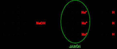lipidos-15-saponificacion