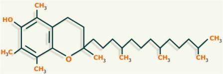 lipidos-30-vitamina-E