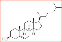 lipidos-35-colesterol