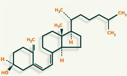 Los Esteroides Lidia Con La Química