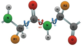 proteinas-10-giro-enlace-peptidico
