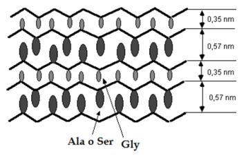 proteinas-25-fibroina