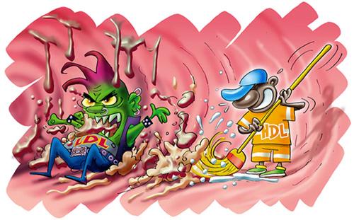 proteinas-30-colesterol-bueno-malo