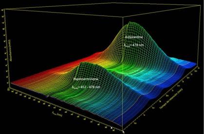 Cromatograma-3D-a