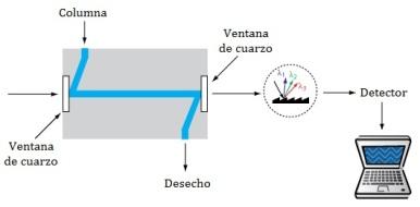 detector-absorbancia-UV-HPLC