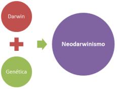 neodarwinismo