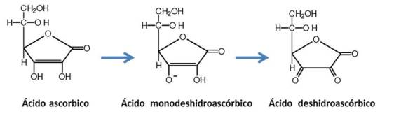 accion-antioxidante-vitamina-c