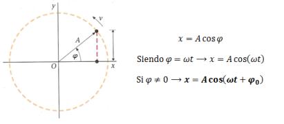 movimiento-circular-movimiento-armonico-simple